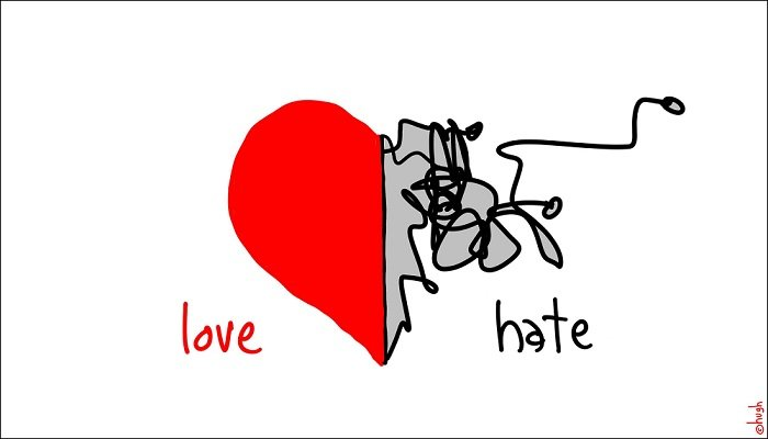 I-hate-to-love-you